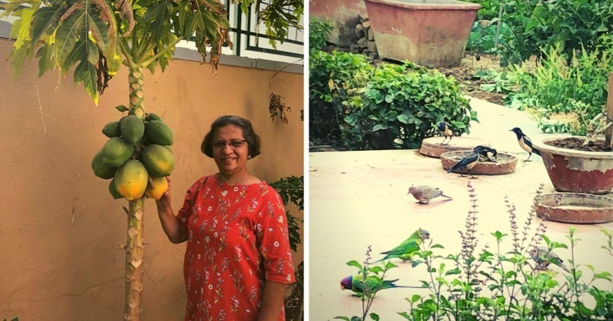 Bhawna Shah organic